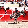 2017-02-20-ALVARO-TORO_DE_ONCE/018