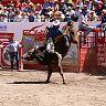 2017-02-22-ALVARO-TORO_DE_ONCE/002