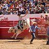 2017-02-27-Fabian-Toro_de_Once_Lunes/046