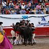 2017-02-27-alvaro-corrida_formal_3era/082