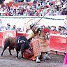 2017-02-28-alvaro-corrida_formal/036