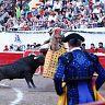 2017-02-28-alvaro-corrida_formal/076