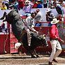 2017-09-16_Toro_de_Once/055
