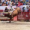2017-09-16_Toro_de_Once/074