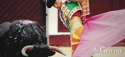 Del callejón al ruedo, sueño colombiano